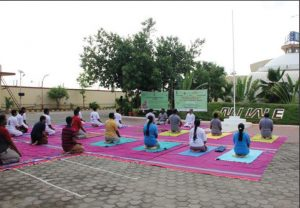 National Yoga Day being celebrated at the National Institute of Wind Energy