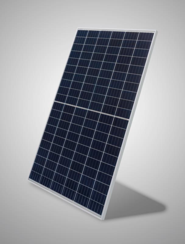 Head To Head Perc Or Mono Half Cell Renewable Watch