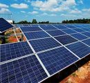SECI issues tender for 32 MW of solar projects at Singareni Collieries in Telangana