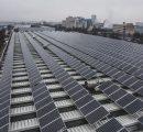 CEL invites bids under tenders for the supply of 1.43 million solar cells