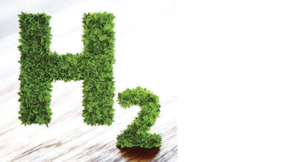 Green Hydrogen Plans