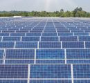 TP Saurya wins auction for 250 MW solar project conducted by MAHAGENCO