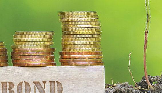 Financing Renewables